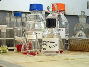 Se og læs om de to allergene forbindelser i vores artikel. Har du MI/MCI i din håndsæbe, opvaskemiddel og lign. produkter?