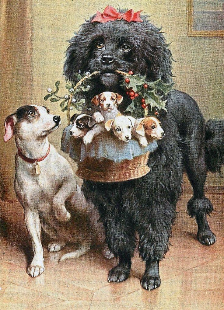 Открытка с днем рождения пес павлов, своими