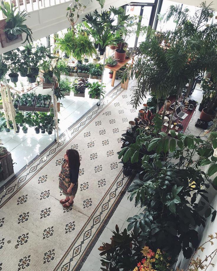 FLORAL & PLANTS PORTLAND, OR. Deliveries, Events & Interior Greening 902 SW Morrison St. 801 N. Killingsworth