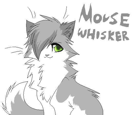 Warriors Cats Insults