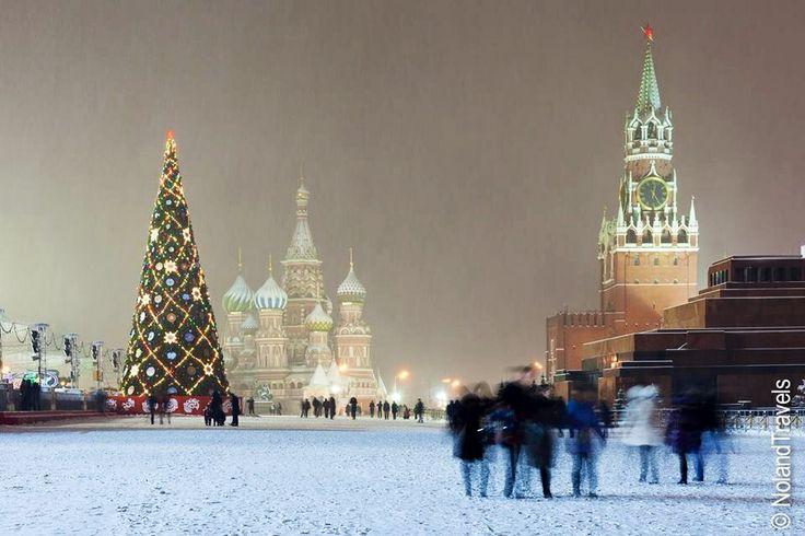 Llegó la Navidad y el árbol al estilo occidental a Moscú, Rusia!