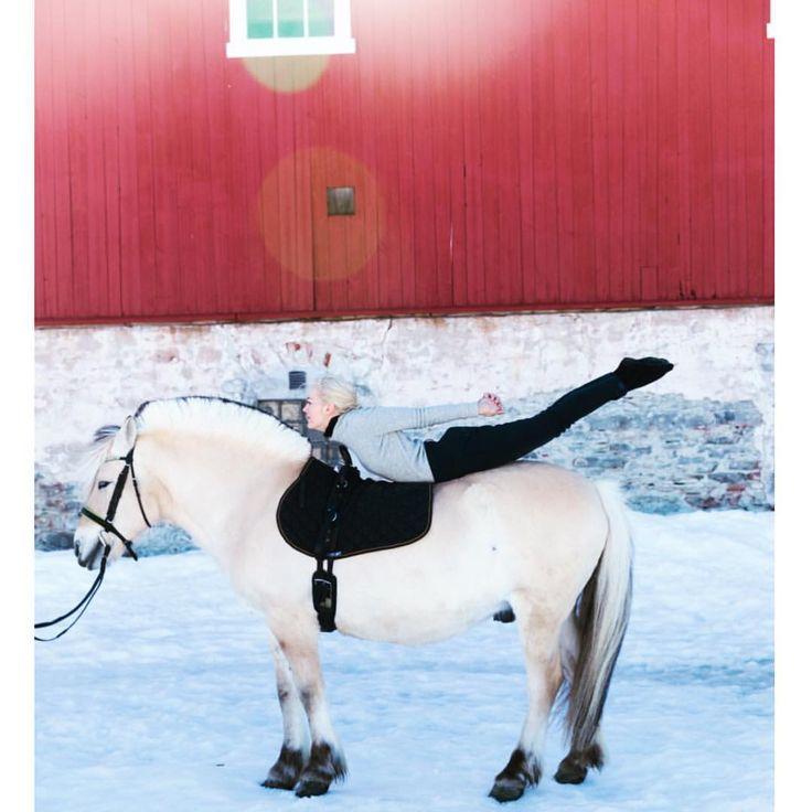 "152 likerklikk, 10 kommentarer – Tine Monsen (@tinemonsenno) på Instagram: ""Time for yoga 🙏🏻🙌🏻 from this weekend when I tried yoga on a horse 🙈 more photos on my blog!…"""