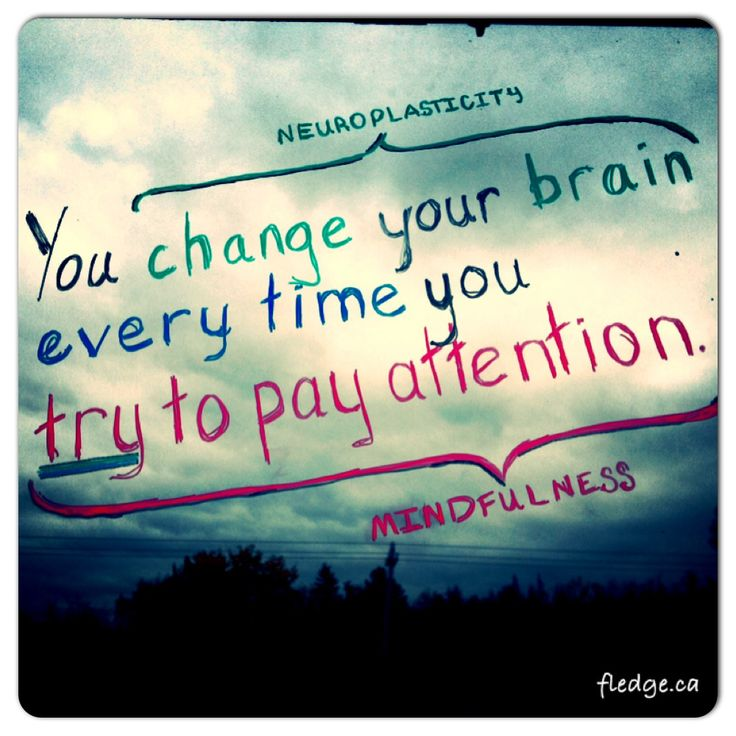 You change you brain every time you try to pay attention. Neuroplasticity meets mindfulness practice.