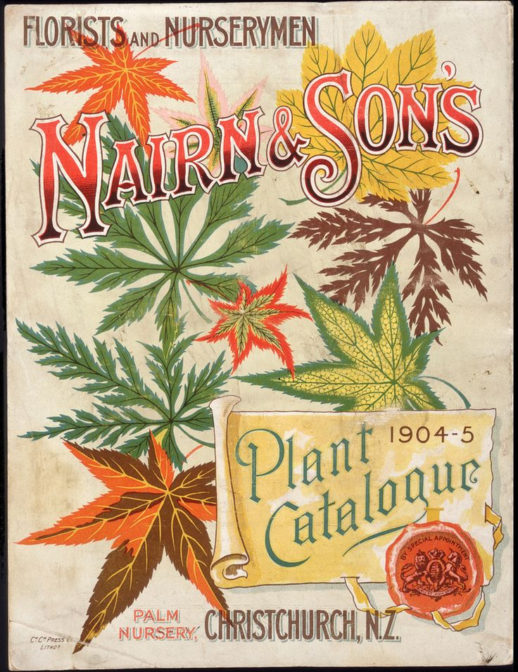 Nairn & Sons Ltd, Plant catalogue [cover], 1904-05, `Lithograph, coloured 240 x 182 mm, Printed Ephemera Collection, Alexander Turnbull Library