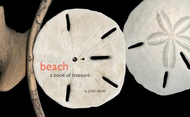 Cover of Beach: a Book of Treasure