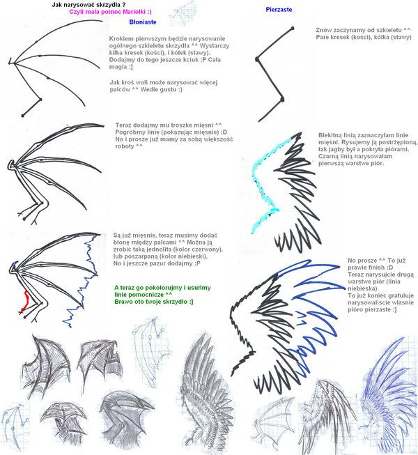 Heart with wings | How to draw wings by ~1993Mariola on deviantART