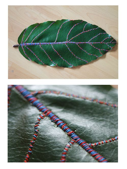 Embroidery thread on leaf, 2 hours and 53 minutes. (by Karin Yamasaki)