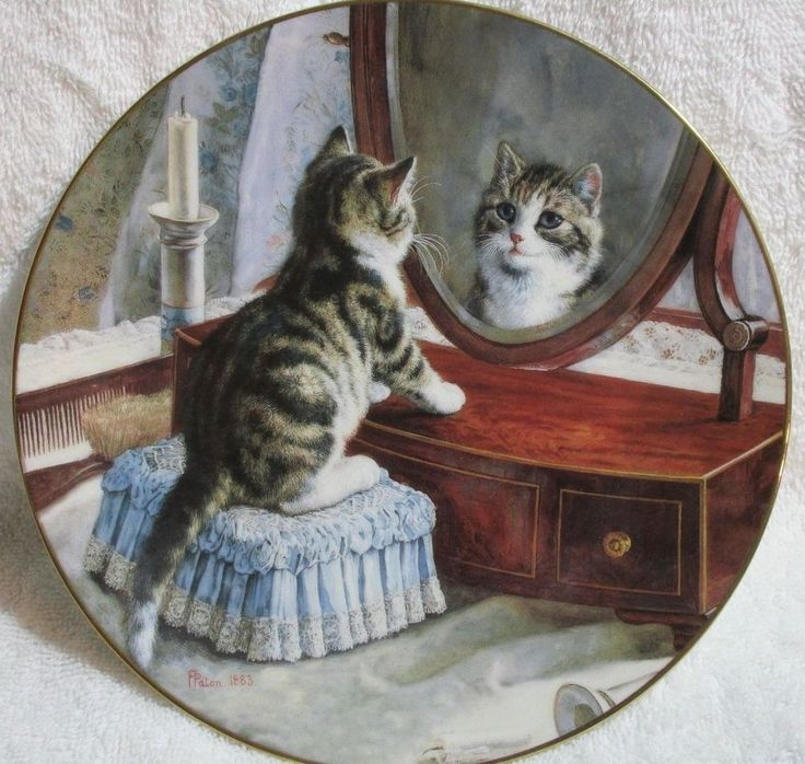 Kitten Decorator Plate 8.5  Dia.  Whou0027s the Fairest of them All?  & 9 best Decorative Plates images on Pinterest | Decorative plates A ...
