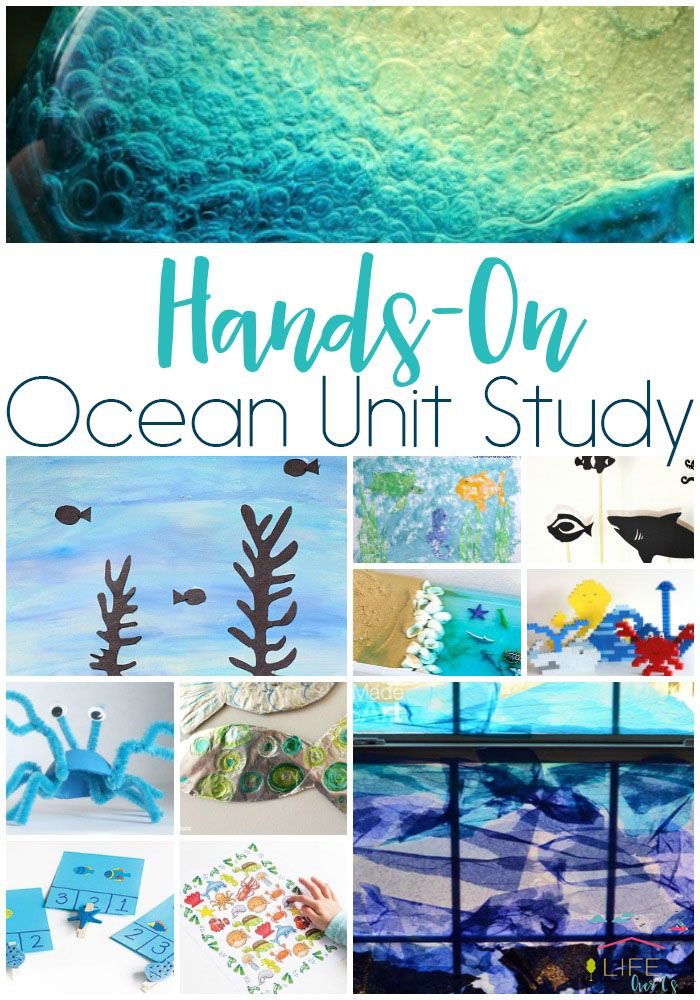 Your kids will love this hands-on ocean unit study. Choose from STEM, science, math, literacy, art and craft activities!