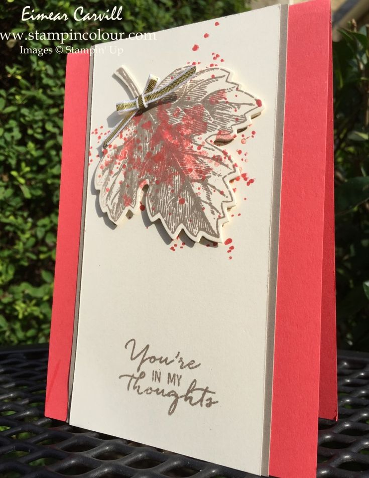 Eimear Carvill www.stampincolour.com Stampin Up Vintage Leaves Gorgeous Grunge Watermelon Wonder