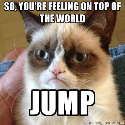 so, you're feeling on top of the world jump - Grumpy Cat 1 | Meme Generator