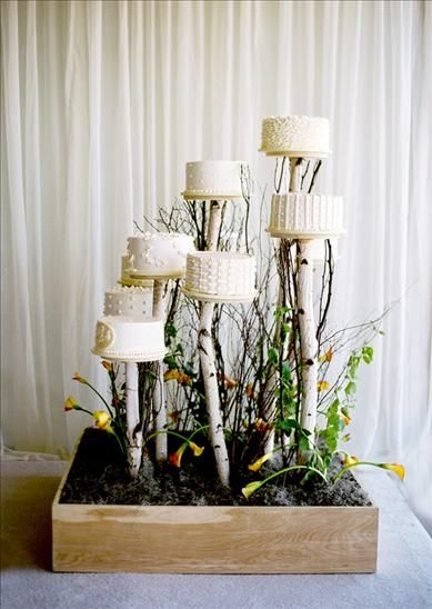 Cake Pedestals: Forests, Minis Cakes, Cakes Display, Weddings Cakes, Cakes Tables, Beaches Inspiration, Cakes Trees, Cakes Stands, Weddings Idea