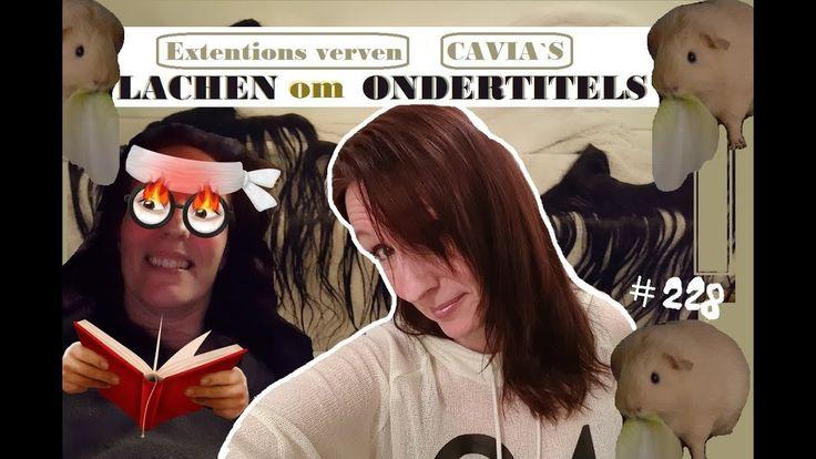 LACHEN om ONDERTITELS    hairextensions en CAVIA`S  #228