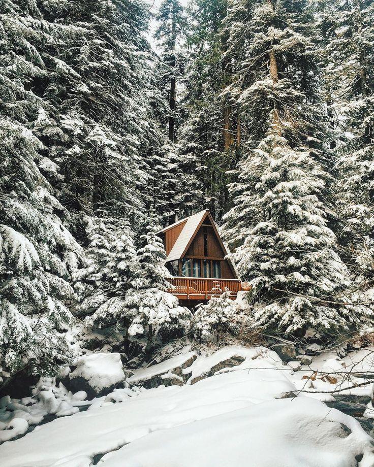 Ein perfektes kleines Blockhaus im Wald. Finden Sie mehr Information auf https://www.pineca.de/blockbohlenhauser/