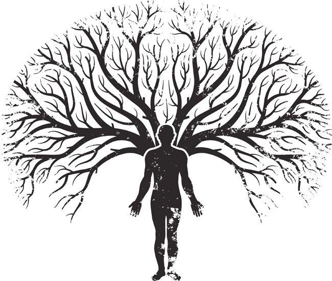Limpieza Del Árbol Genealógico: La Prosperidad.- La Prosperidad es un estado natural del Ser, es quietud y seguridad, es vivir en gratitud y tranquilidad, en perfecto amor incondicional que genera ese estado de bienestar del alma, es vivir en serena alegria. La Prosperidad no es solo economica-financiera. Prosperidad es amor, dinero,. salud, exito..Para conseguirlo primero hay que vibrar en el corazon, en la quietud del punto cero del eje central de luz de cada uno. Pero indudable que hay…