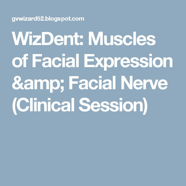 WizDent: Muscles of Facial Expression & Facial Nerve (Clinical Session)