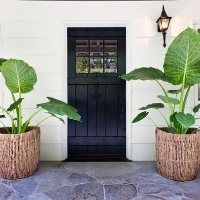 Tropical Home Front Door Design, Pictures, Remodel, Decor and Ideas                                                                                                                                                                                 More