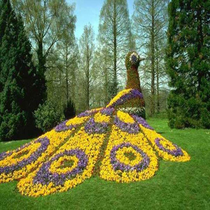 De 25 bedste id er inden for topiary garden p pinterest for Topiary garden designs