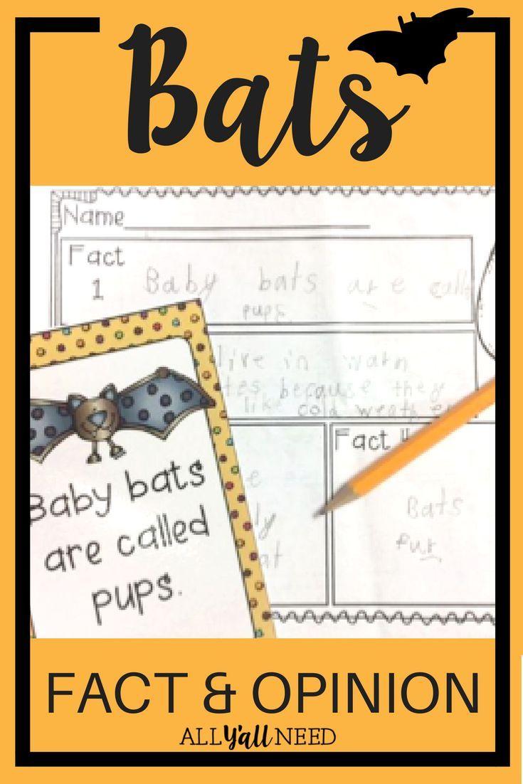 best 20 bat facts for kids ideas on pinterest bats for kids
