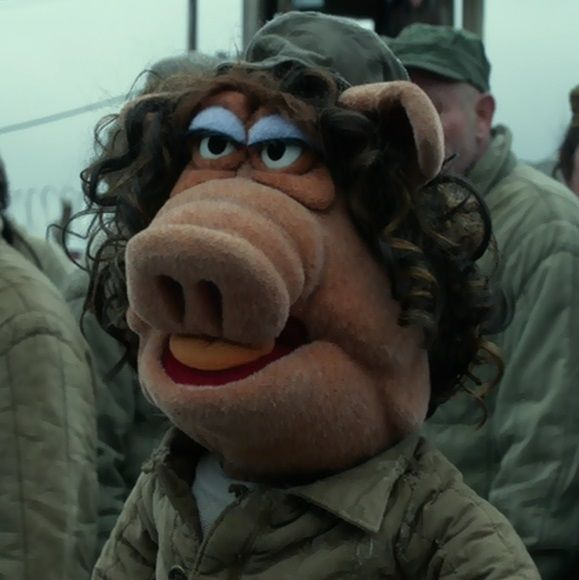1000 Ideas About The Muppet Christmas Carol On Pinterest: 1000+ Ideas About Muppets Most Wanted On Pinterest