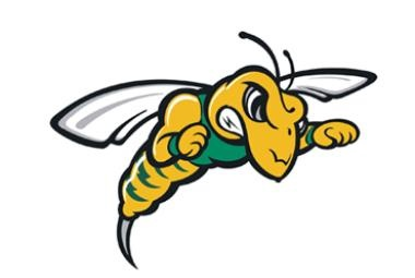 Black Hills State University Athletics - Fear the Sting!