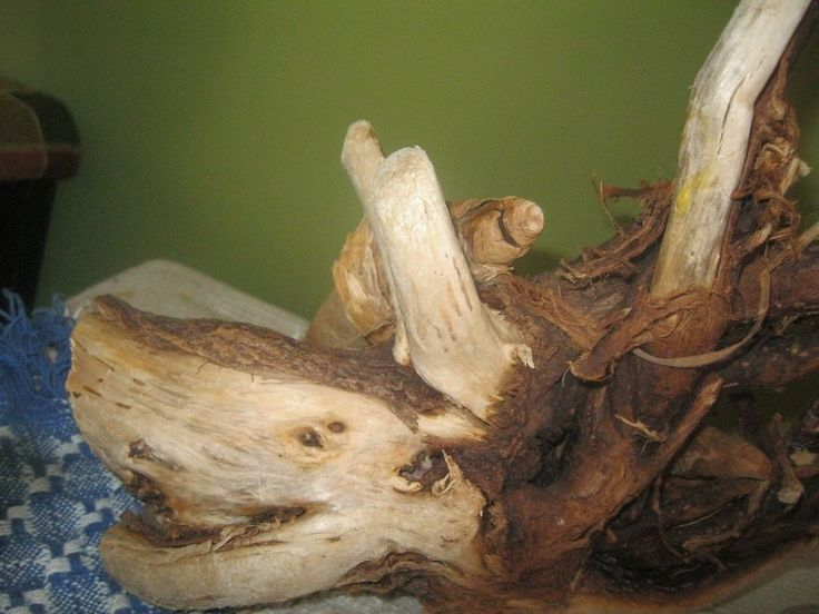 """"""" check out` CHARACTER plus !!!  18 IN NATURAL 2 pc DRIFTWOOD` dark wood & ROOTS #CurrentUSA"""