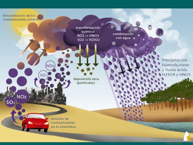causas y consecuencias de la lluvia acida - Buscar con Google