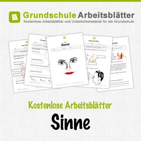 517 best Sachunterricht images on Pinterest | Grundschulen ...