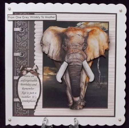 MALE ELEPHANT Age is Just a Number 8x8 Birthday Decoupage Mini Kit   Craftsuprint