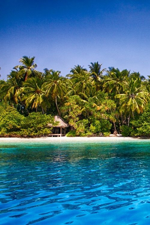 Maldives - Fihalhohi by Tobias Brunner