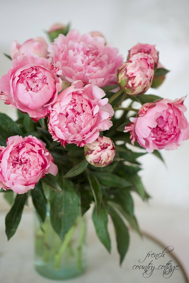 Flower arrangement in pink and green with peonies