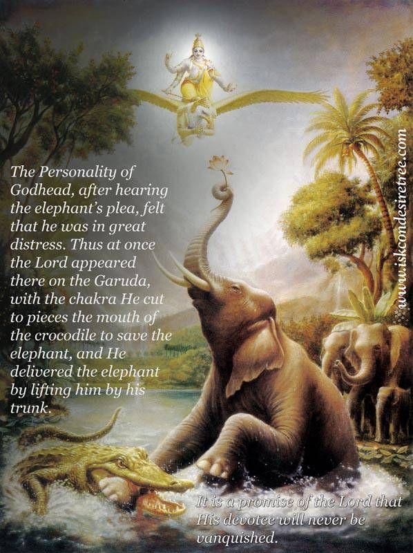 Srila Prabhupada on The Lord Delivering The Elephant