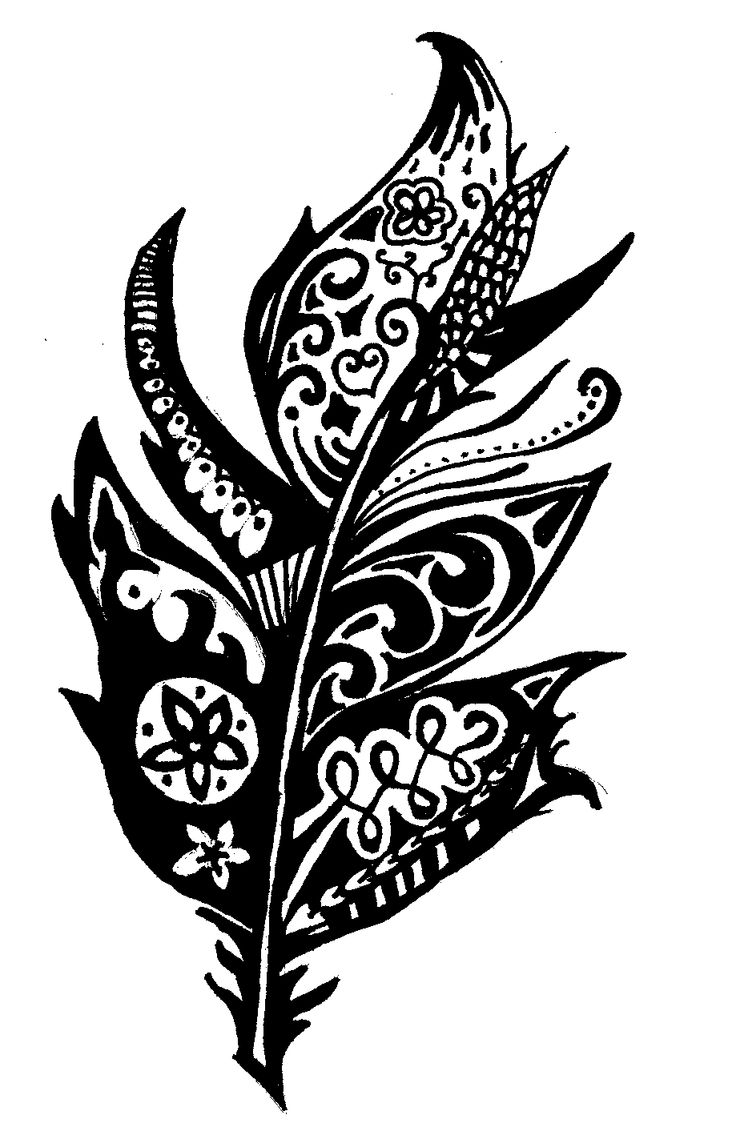 copied drawn feather, zentangle, lujzarvai