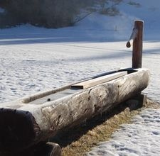 I love this picture of a wooden water trough with an old pump and a floating board to keep ice at bay.