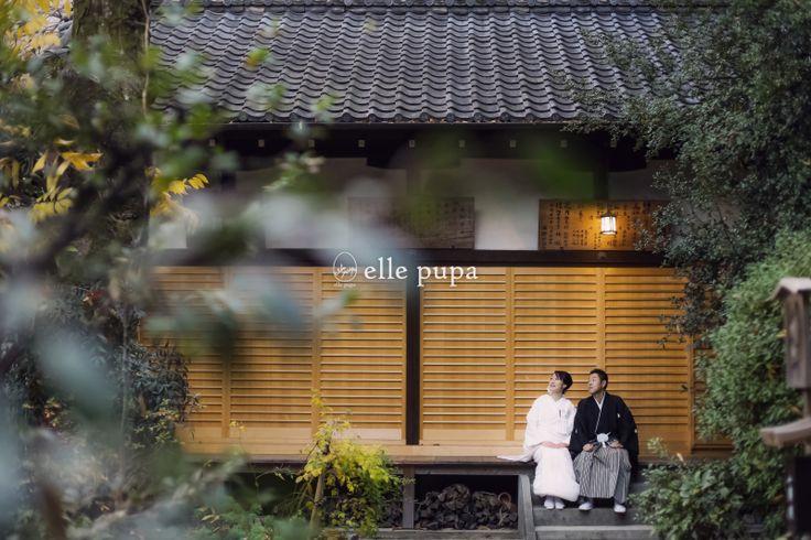 京都府庁と思い入れのある場所でまったりロケ* |*elle pupa blog*