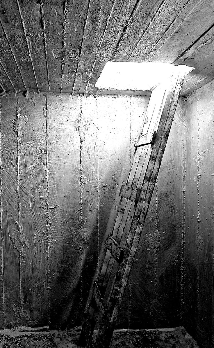 Ladder   Stairway to the light