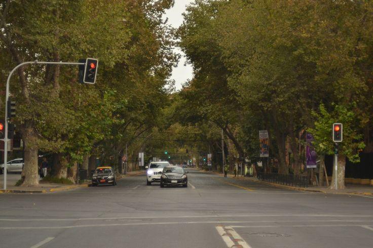 Av. Pedro de Valdivia - Av. Pedro de Valdivia - Providencia - Santiago de Chile  Photo shot Nikon D3100 + Carl Zeiss Jena Tessar 50mm f2.8