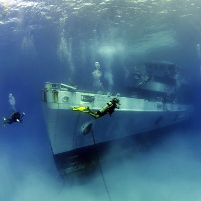 Best scuba diving sites in the Cayman Islands | Experience Caribbean