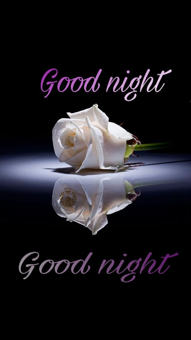 Good night sister and yours have a peaceful night