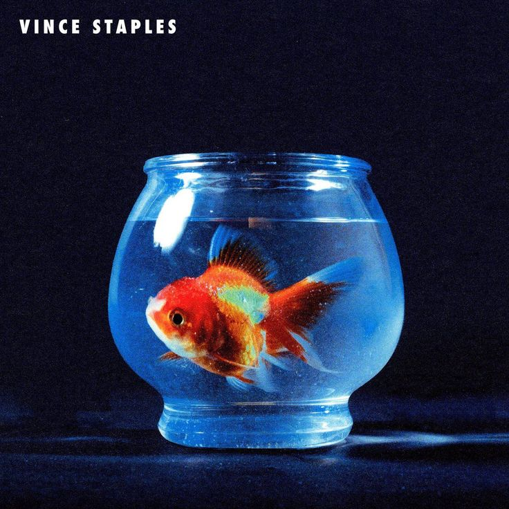 "Back in February, Vince Staples dropped a new single called ""BagBak"" and revealed that he had a new project on the horizon. We haven't heard much about it since, but there was wide speculation that the project, now known to be titled Big Fish Theory, would be out this week. That turns out to not be the case, as Vince revealed in a new interview with Zane Lowe that the project is set to arrive on June 23rd. Click to check out the new single and title track featuring Juicy J via its new video."
