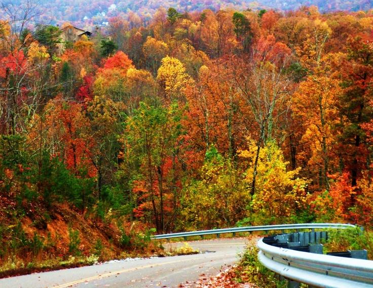 Autumn Gatlinburg Tn