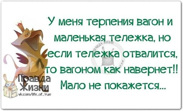 https://pp.vk.me/c7008/v7008334/16cbe/h3FEkPjAQ7A.jpg