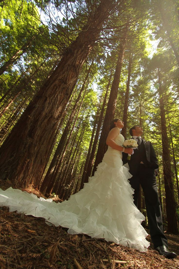 Bay of Plenty Weddings: Lake Tarawera- Ash and Rene