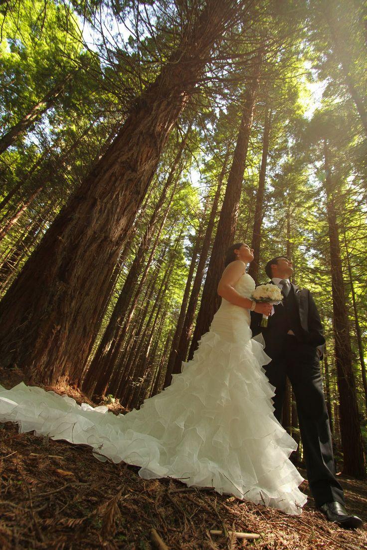 Bay of Plenty Weddings: Lake Tarawera- Ash and Rene
