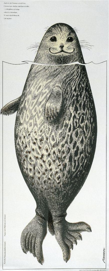 Saimaa Ringed Seal, 1974 - 410