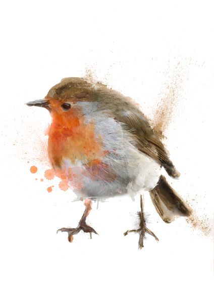 Robin - Bird artwork by Manchester based wildlife and pet portrait artist Ben Ark. Created using a variety of materials including acrylic paint, computer software, drawing pens, ink, watercolour and graphite. #Robin #Animal #Art