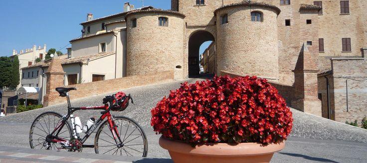 Italy Cycling Holiday and Riccione Bike Hotel HOTEL DORY