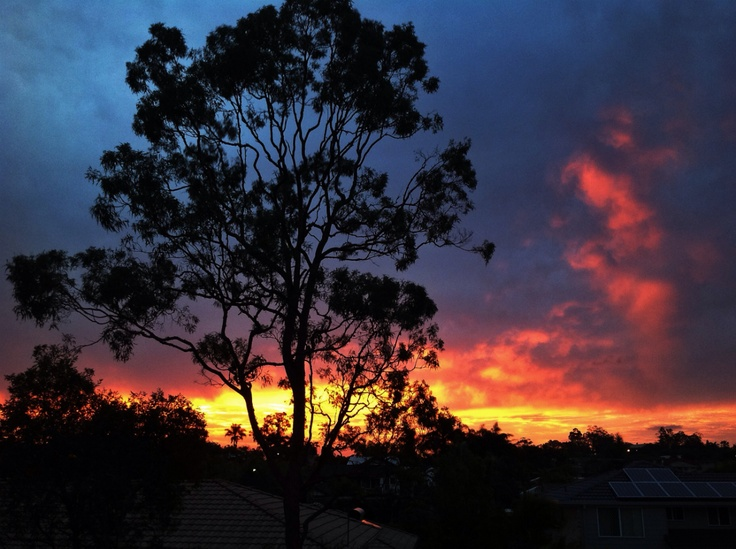 Flaming sunset in the suburbs.