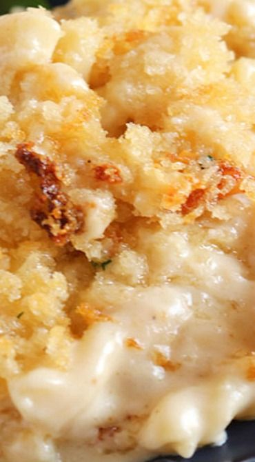 Five Cheese Macaroni and Cheese with Panko Crust