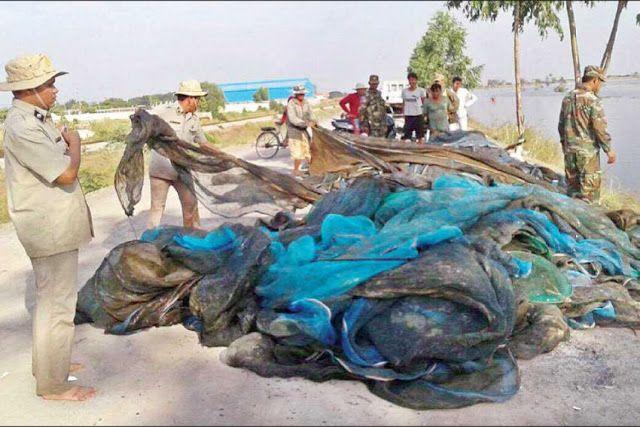 Illegal fishing seizures in Kampong Chhnang Poipet